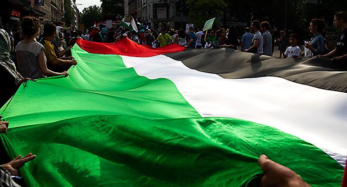 Manifestation du 19 juillet 2014 à Lille